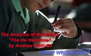 Andrew sullivan essays